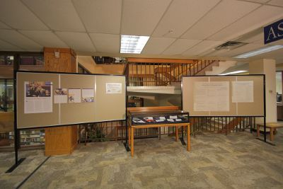 Photo of FSID faculty research display at the library