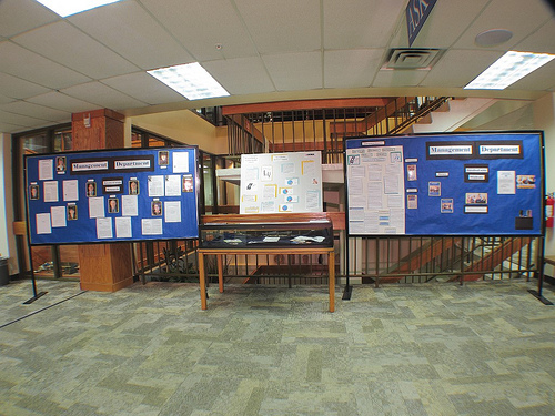 Management Department research display